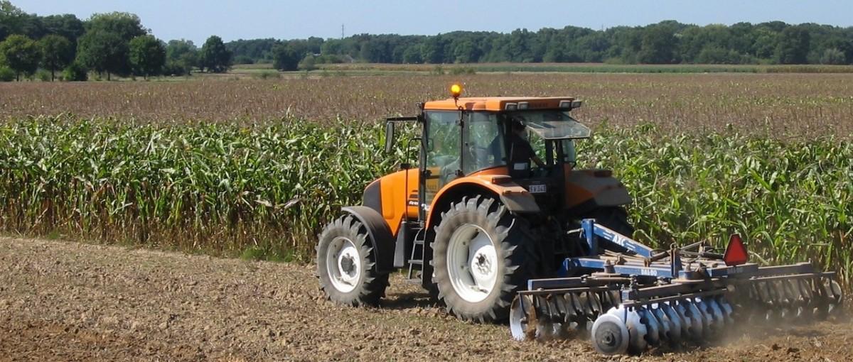 Opryski zbóż preparatem chwastobójczym