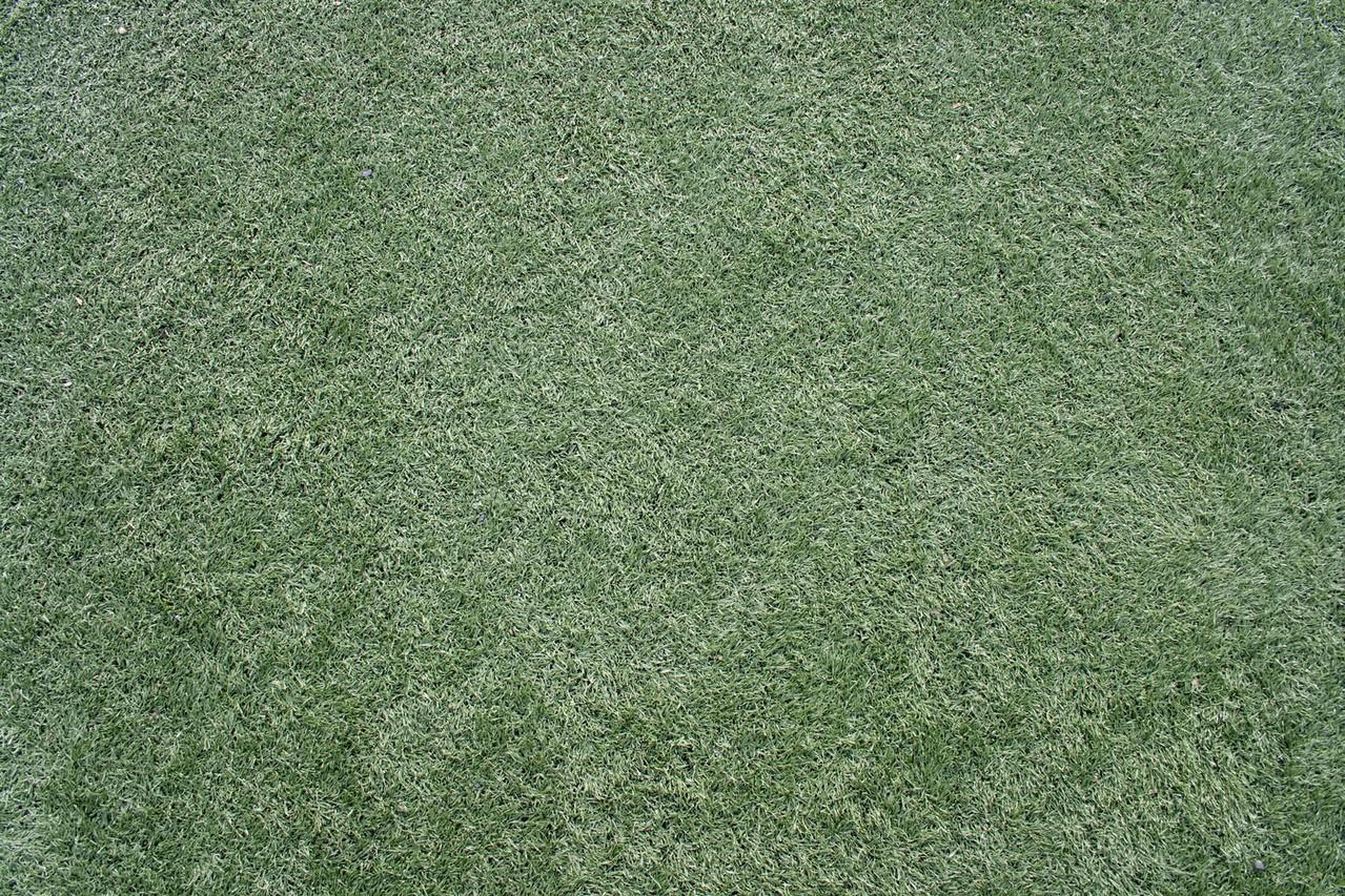 Środki niszczące chwasty wrażliwe w trawnikach